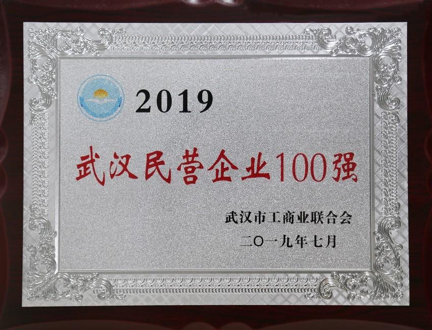 2019武汉企业百强